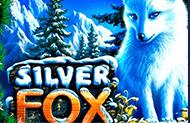 Игровой автомат Silver Fox